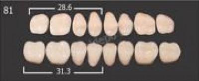 Зубы пластмас.(20 гарнитуров) А3/28