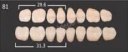 Зубы пластмас.(20 гарнитуров) А2/26